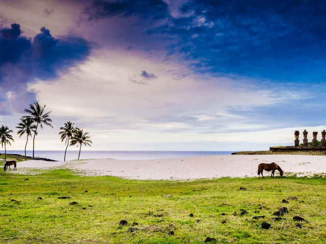 Green Island Tours-Easter Island Photography